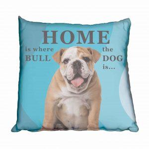 Bulldog Boy Puppy Scatter Cushion