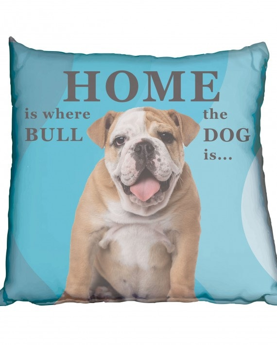 Bulldog Boy Puppy Scatter Cushion