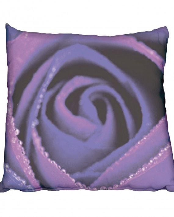 NC004 Flower-purple-&-blue-rose