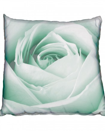 NRC001---Black-&-White-Rose-teal-cushion