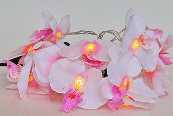 Orchids String Lights