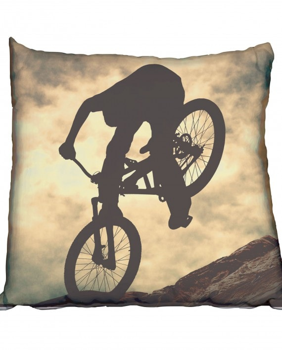 SMC010---Dust-Mountain-Biker-cushion