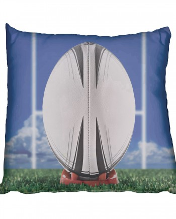 SRC011 -rugby-ball & poles(cushion)