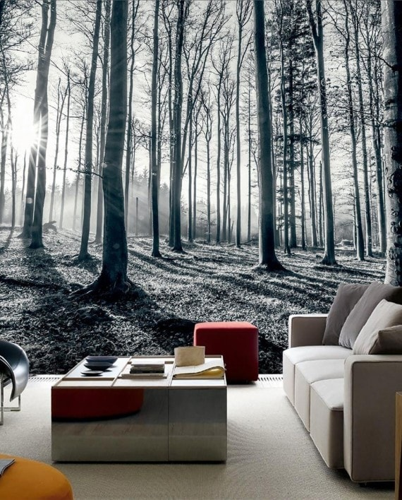 Wall Paper - Black and White tree background in a lounge setting