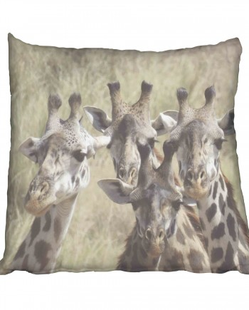 African Giraffe Scatter Cushion