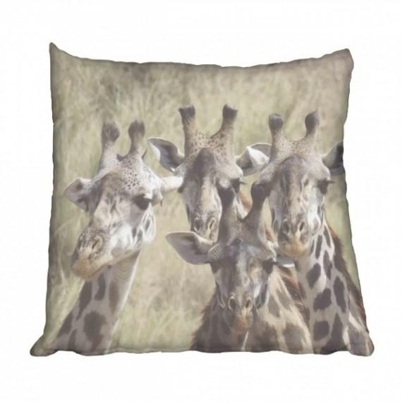 African Giraffe Scatter Cushion