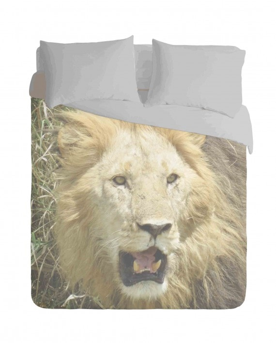 African Lion Duvet Cover Set