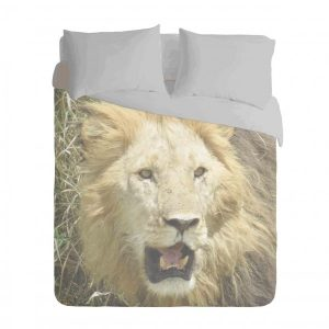 African Lion Duvet Cover Set