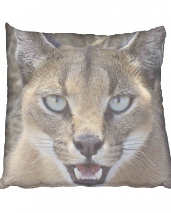 African Wild Cat Scatter Cushion
