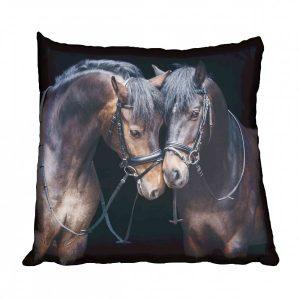 Pair of Saddlebred Horses Scatter