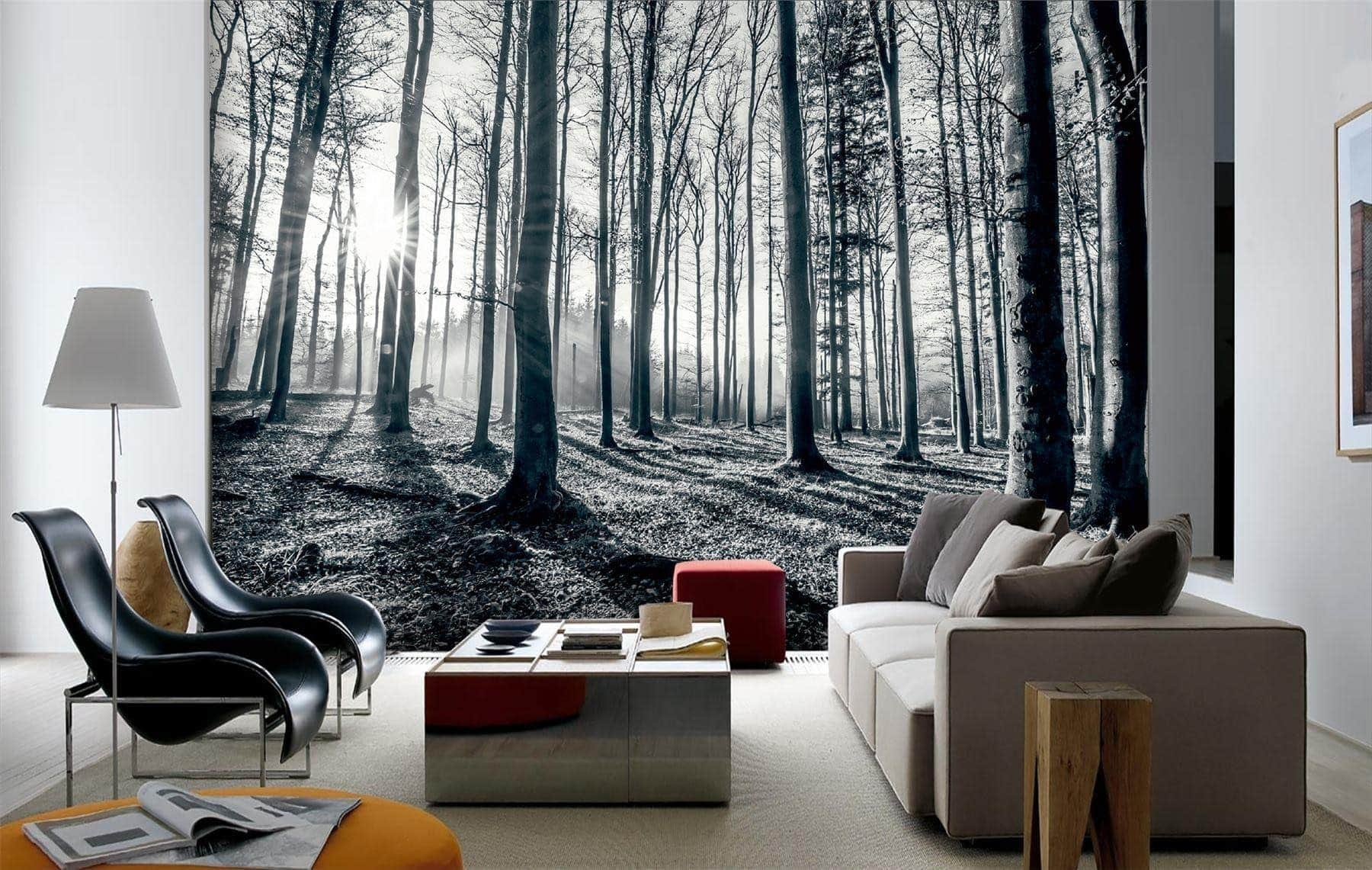 Wallpaper inspiration Black & White Forest with Sun rays